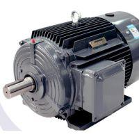 贝得2级能效电机1TL0003系列