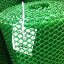塑料平网养殖网 绿色胶网 阻燃塑料网