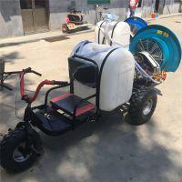 金佳蔬菜田三轮车自走式打药机 新疆履带葡萄打药设备 风送果园喷雾器