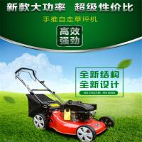 草坪剪草机 小型割草机