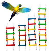 ebay 亚马逊爆款 鹦鹉七彩爬梯木珠旋转梯 攀爬梯 过山梯 鸟玩具 站架 鹦鹉啃咬玩具