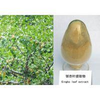 现货供应 银杏叶提取物 食品级 银杏叶提取物 质量保证 1kg起批