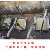 一级代理三菱丽阳中空纤维膜60E0025SA学校污水处理及回用