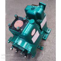 80QZBF-60/90N自吸式车用洒水泵
