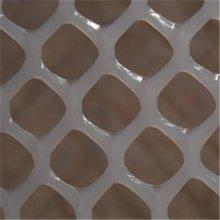 塑料养殖平网 水产养殖网 白色塑料网现货