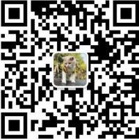 深圳市捷达兴科技有限公司