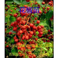 http://himg.china.cn/1/4_74_236090_518_614.jpg