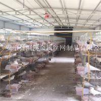 厂家直销优质铁丝镀锌不生锈鸽子笼 鸽笼子 养鸽子的笼具用品用具