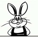 船山区兔司机养殖场