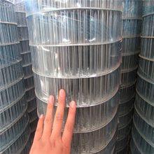 工业涂塑荷兰网 绿色浸塑荷兰网 果园圈地围栏网