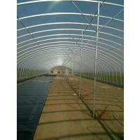 椭圆管暖棚 椭圆管拱棚镀锌材质耐用 使用寿命长