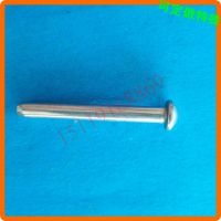 不锈钢圆头销钉 扁圆头销轴 加工订做 佛山中山铆钉厂D4567891217