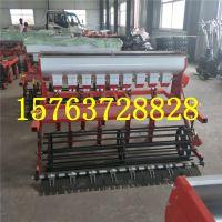 鲁丰机械12行小麦播种机 蔬菜种子播种机报价