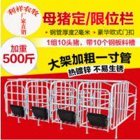 利祥农牧相关推荐母猪定位栏批发价格