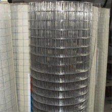 安平热镀锌电焊网价格 热镀电焊网厂家 荷兰网铁丝网