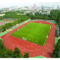 上海新标体育场塑胶跑道施工高耐磨混合型塑胶跑道材料厂家热销