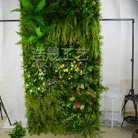 仿真植被绿植墙哪家可以包安装?浩晟 仿真植物墙 生态绿化风景墙包安装