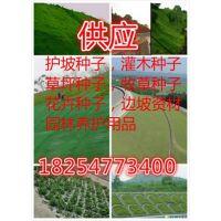 http://himg.china.cn/1/4_756_239052_289_402.jpg