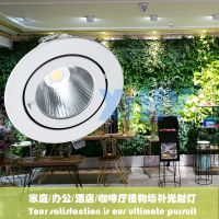 LED室内植物绿墙补光灯/绿植墙生长专用内嵌式天花射灯30瓦高显指XIHV
