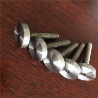 耀恒 定制 实心不锈钢广告钉、装饰钉螺丝、内六角广告钉M6M8M10