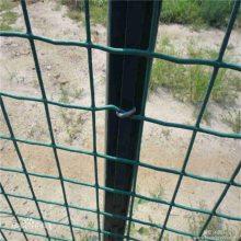 绿色浸塑荷兰网 养鸡场围网 圈地用铁丝网