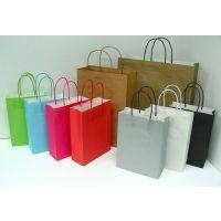 厂家专业订做环保纸袋 手提纸袋定做 礼品袋 服装袋 广告