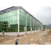 高温阳光房温室、玻璃连栋生态餐厅大棚建造厂家——青州瀚洋温室工程