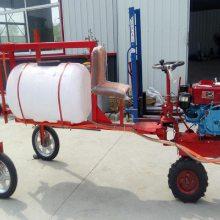 手扶风送式果树打药机 三轮自走式果园喷雾器 高杆打药车
