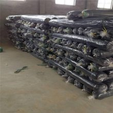 工地盖土网 绿化用网 环保用绿色网