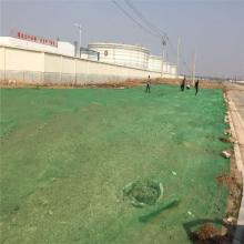 绿色盖土网 防尘网 公园施工防尘网