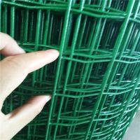 冀福江丝网批发耐用型硬塑荷兰网养鸡铁丝围栏网果园防护网
