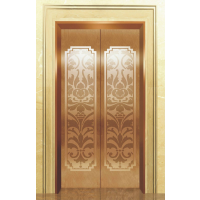 (福建)福州***有实力的电梯轿厢装饰公司(18559166969)