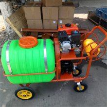 兰州高效率二冲程喷雾机 蓖麻防虫喷雾机 经济实用的高压喷雾器