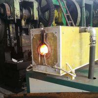 供应瑞奥RAZ-250KW圆钢棒料透热设备 可控硅中频锻造炉非标定制