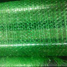 盖土网 绿色盖土网 绿化网