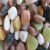 地坪专用各种颜色水磨石子 水磨石碎石卵石 胶粘石