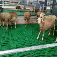塑料羊粪板 羊产床 高架羊床
