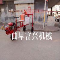 富兴牌自走式喷杆喷雾机 自走式喷灌机喷雾均匀