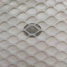 小鸡防坠网 白色塑料网 专业生产养鸡平网