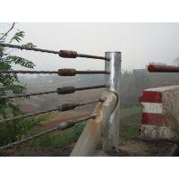 供应河北钢丝绳绳索护栏厂家直销热镀锌公路防撞栏
