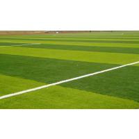 广西区内施工人造草皮 足球场人造草皮 可移动式拼接块草