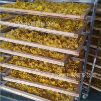 YN型金丝皇菊烘干机 热泵皇菊干燥设备 空气源烘干房厂家专业定制价格