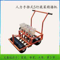 菠菜香菜播种机 人力手推蔬菜播种机 邦腾种植机械