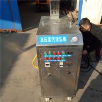 移动式燃气蒸汽洗车机 220V店面高压蒸汽洗车机 多功能商用清洁机