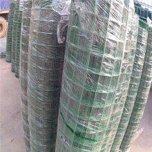 绿色铁丝防护网 圈山专用防护网 养殖护栏多少钱