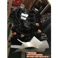 洋马发动机,仨仨玖,98洋马发动机水泵