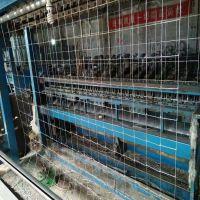 专业生产镀锌饲养动物围栏网,黑龙江草原网