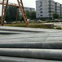 山东12米190非预应力水泥电线杆价格