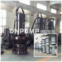 水上作业轴流泵|地面作业轴流泵|干式潜水轴流泵