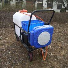新式植保机械蓄电池打药机 防腐蚀高压拉管喷雾器 花卉洒水喷洒机105升
